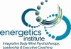 Click for more details about Energetics Institute