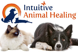 Click for more details about Intuitive Animal Healing